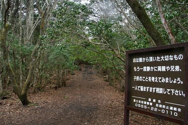Conheça a macabra floresta de Aokigahara, a famosa floresta da morte