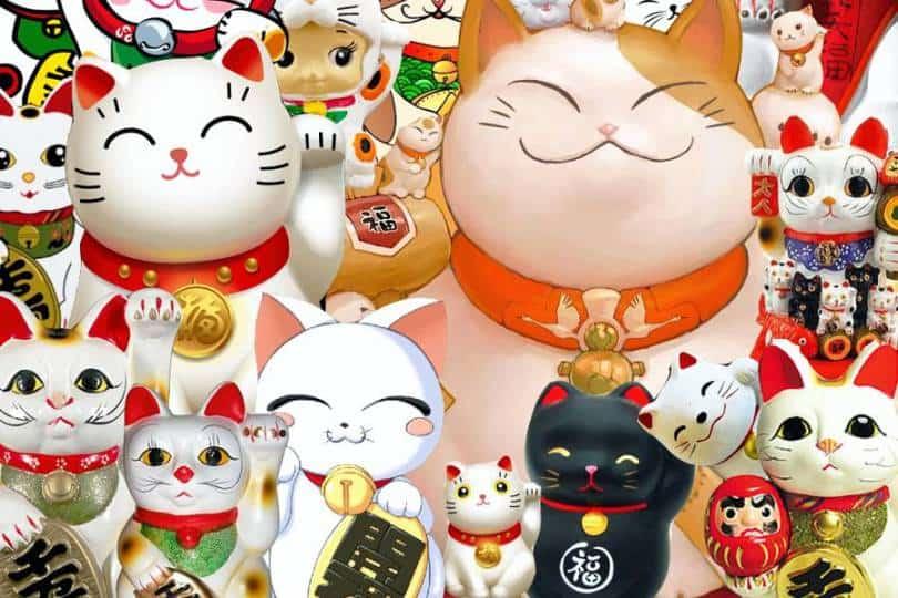 Um samurai, uma gata e uma lenda