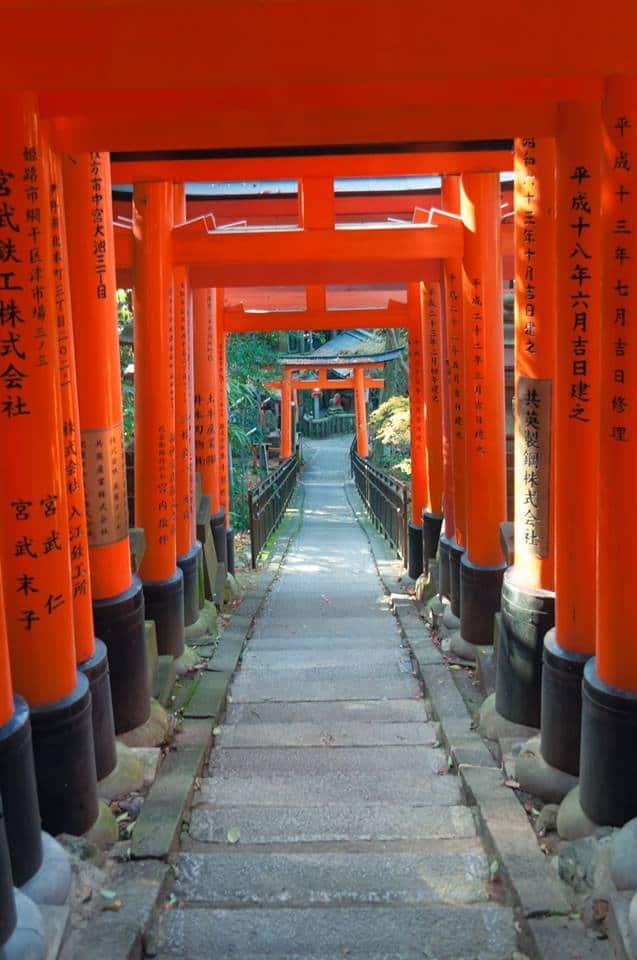 SÉRIE JAPÃO PELOS OLHOS ORIENTAIS - Templo Fushimi Inari-taisha