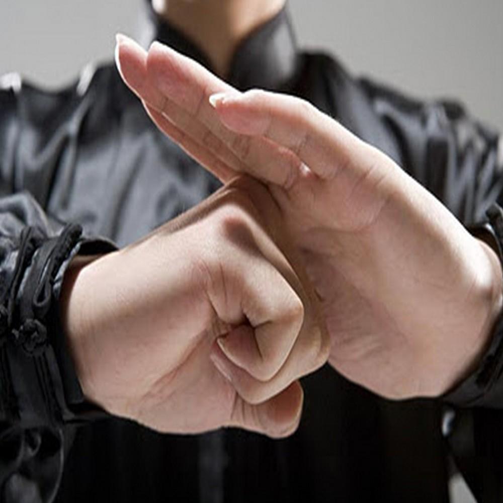 11 de abril -  Dia Nacional do Kung Fu